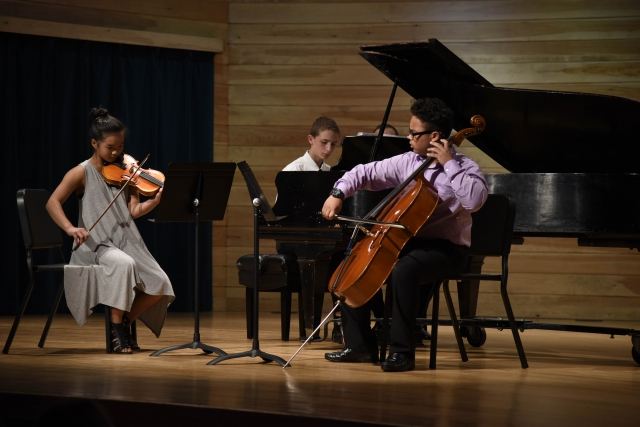 Piano Trio Chamber Music